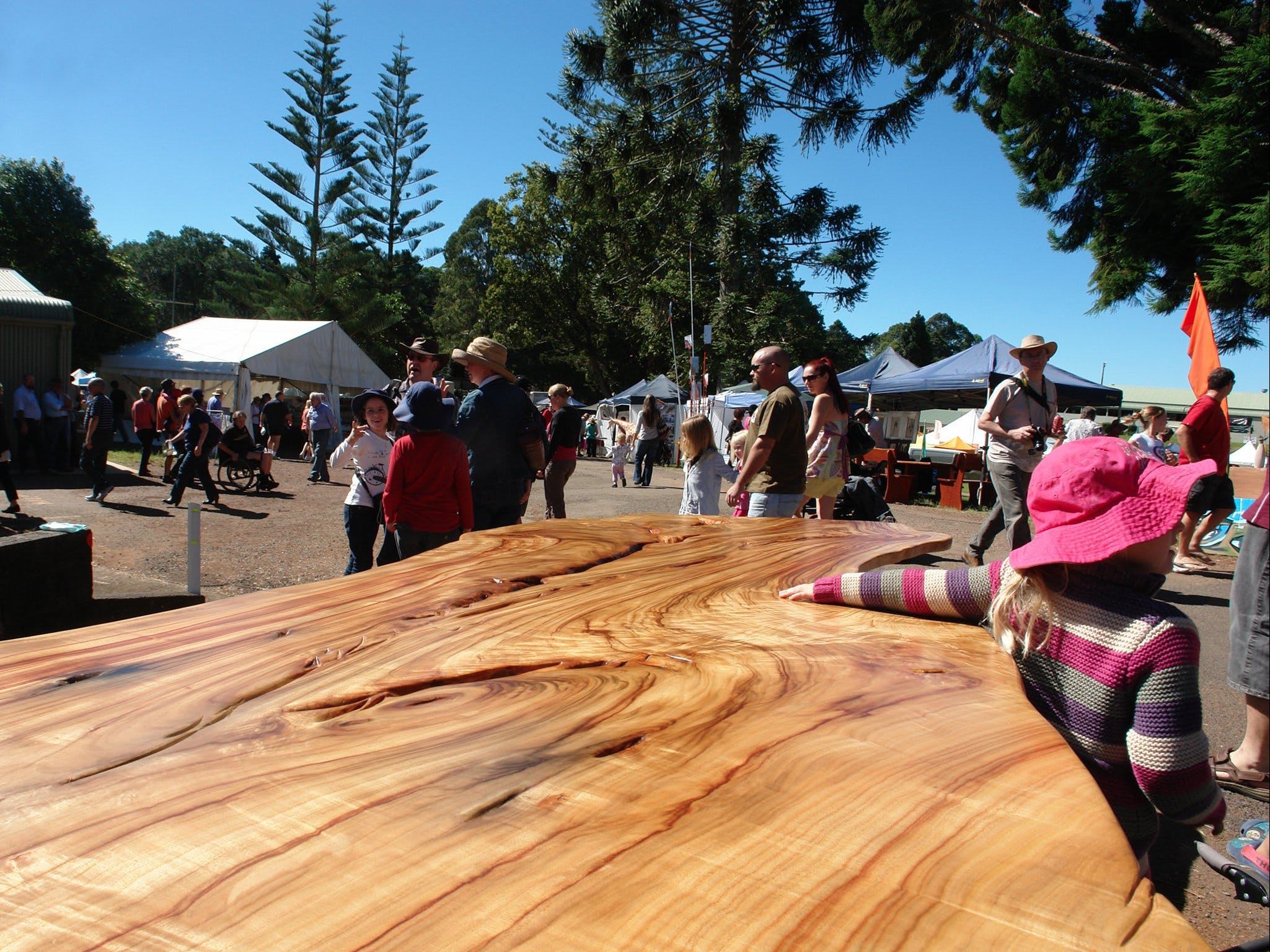 Maleny Wood Expo From Seed to Fine Furniture - Bundaberg Accommodation