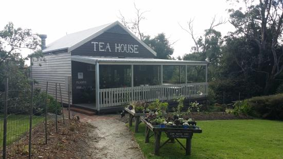 Stockyard Tea House - Bundaberg Accommodation