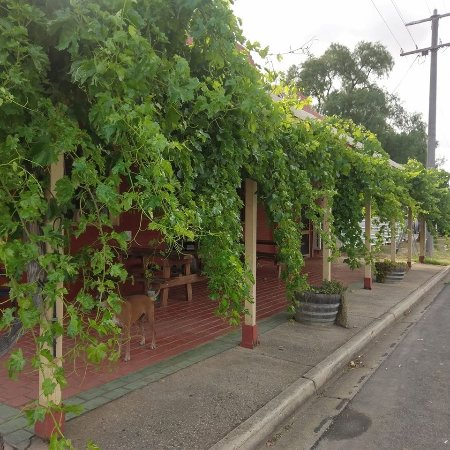 Landsborough Hotel - Bundaberg Accommodation