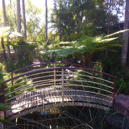 Lorikeet's Coffee Shop - Bundaberg Accommodation