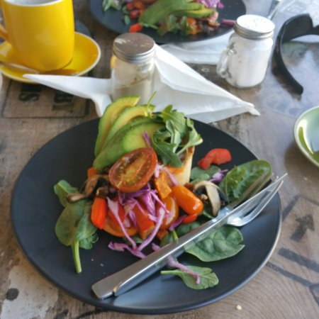 Ripe Harvest Cafe - Bundaberg Accommodation
