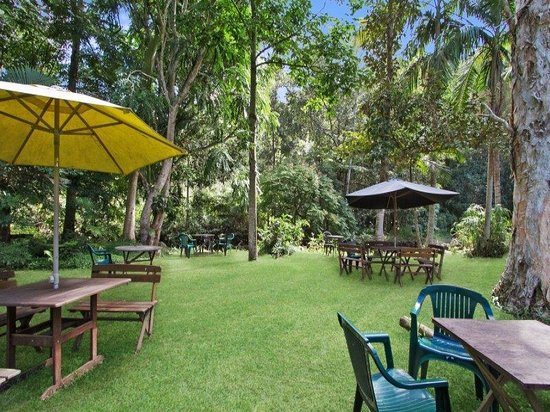 Rainforest - Bundaberg Accommodation